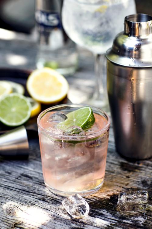 Moscow_Mule_recept - een prachtige cocktail in een koperen mok met vodka ginger ale ijsblokjes en citroen - recept van de gall en gall - plaatje ziet er zo mooi uit - Mels Feestje