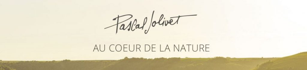 Pascal Jolivet 2